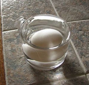 Huevo fresco hundido en el agua