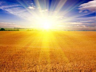 por qué debemos cuidarnos del sol y sus radiaciones