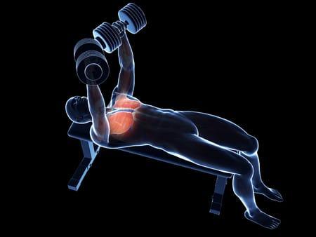 ¿Por qué se produce dolor muscular los días siguientes al ejercicio físico?