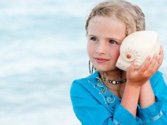 El sonido de los caracoles de mar