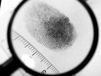 ¿Por qué tenemos huellas dactilares?